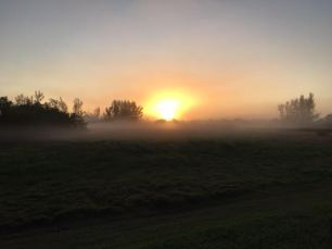 Misty Sunrise 1